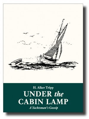 Under the Cabin Lamp